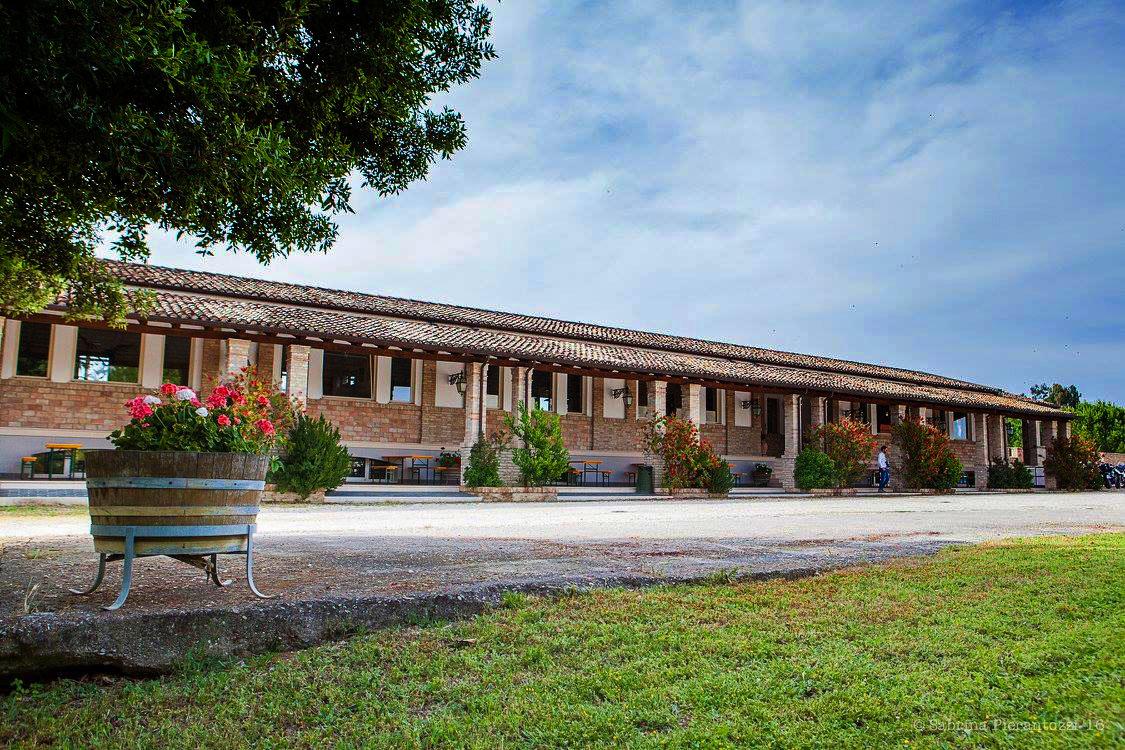 tenuta-del-priore-winery